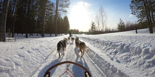 Medical record scanning, dog sleds and a double-hop — An average day for Maniilaq
