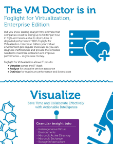 Foglight for Virtualization, Enterprise Edition Infographic