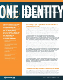Module de gouvernance des applications One Identity Manager