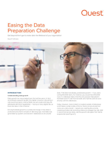 Ease the data preparation challenge ― learn new techniques today.
