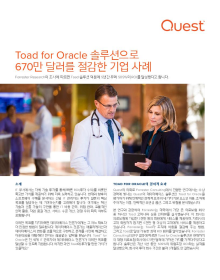 Toad for Oracle 솔루션으로 670만 달러를 절감한 기업 사례