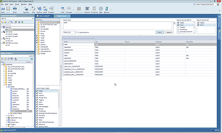 SAP Database Management and Developer Software Tools