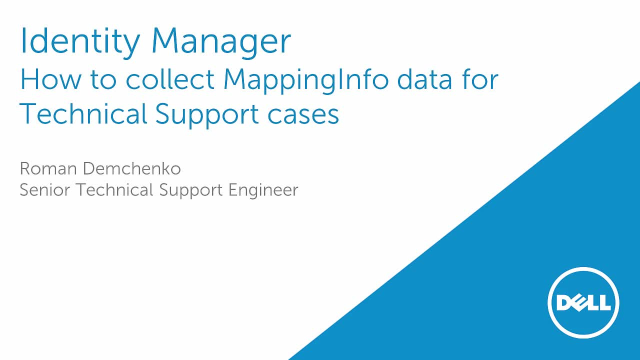 How to collect One Identity Manager MappingInfo data for Technical Support cases